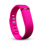 Fitbit Flex – Should I buy one?
