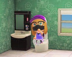 ACNH Tankless Toilet