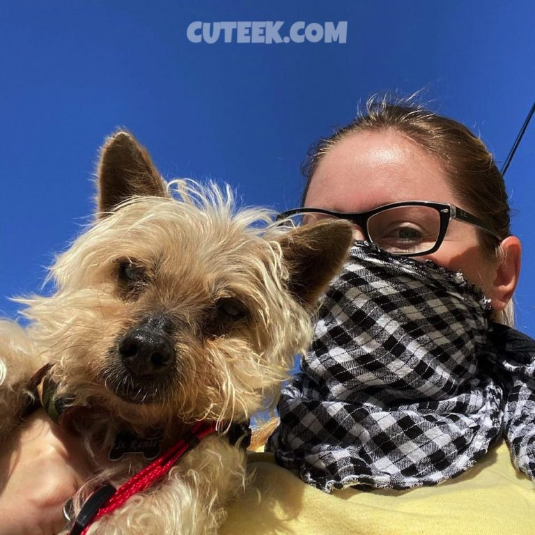 Spain Lockdown Day 2   Girl With Silky Terrier Dog Wearing Mask