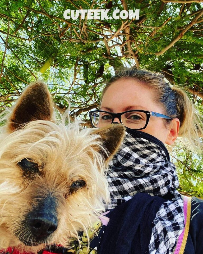 Spain Lockdown Day 3   Girl With Silky Terrier Dog Wearing Mask