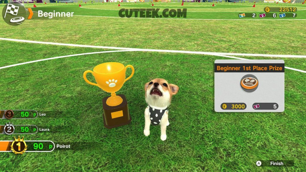 Little Friends Dogs and Cats Flying Disc Competition