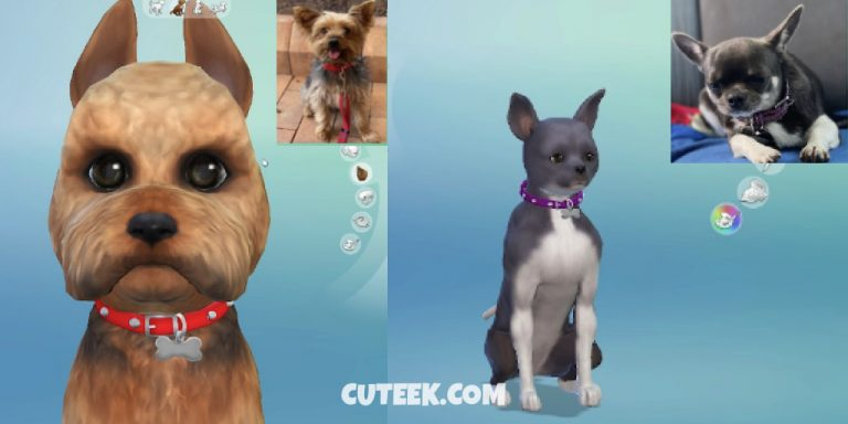The Sims 4 Cats and Dogs Create a Pet Tool